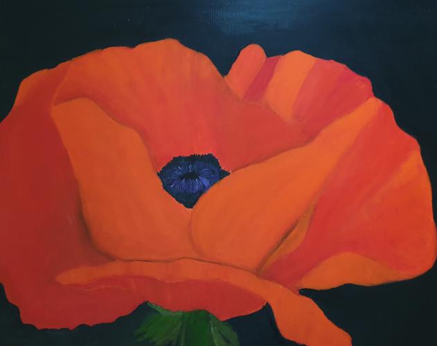 Mohnblüte (Öl auf Leinwand) ist ein Bild von Renate Volkland zur aktuellen online-Ausstellung der Künstlergruppe Kunst & Bündig.